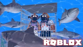ROBLOX SHARK ATTACK (Roblox Shark Bite)