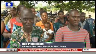 IFAD Assesses Anambra Farmers Progress In Rice Production