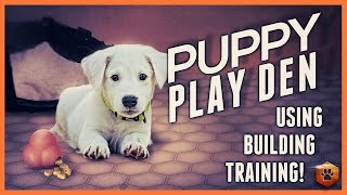 How to Use the Puppy Play Den for Solid Puppy Training!