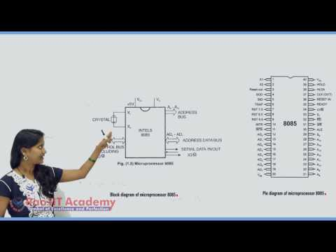 Introduction to Microprocessors & Organization of 8085 Part 2 Computer Science Board video lecture B