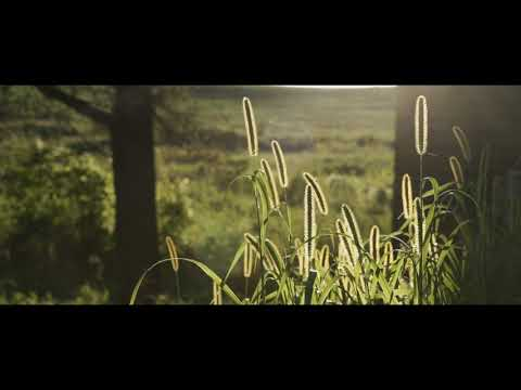 John Raymond - Where We Grew Up Trailer