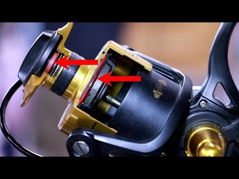 Cheap vs Expensive Fishing Reels - Which is best? Choose