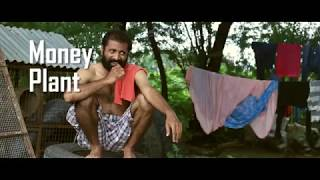 Para Bitkileri Ödüllü kısa film