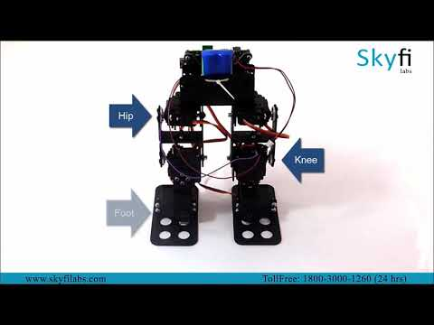 Walking Robot - Skyfi Labs Project-based Course