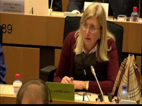 Andreasen questions Rehn on difficulties within eurozone