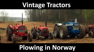 Many Vintage Tractors Ploughing Norway 2015