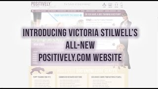 Introducing The All-new Positively.com - The Ultimate Dog Training, Behavior & Wellness Website