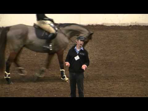 Jumping For Ex-Racehorses: PA Expo