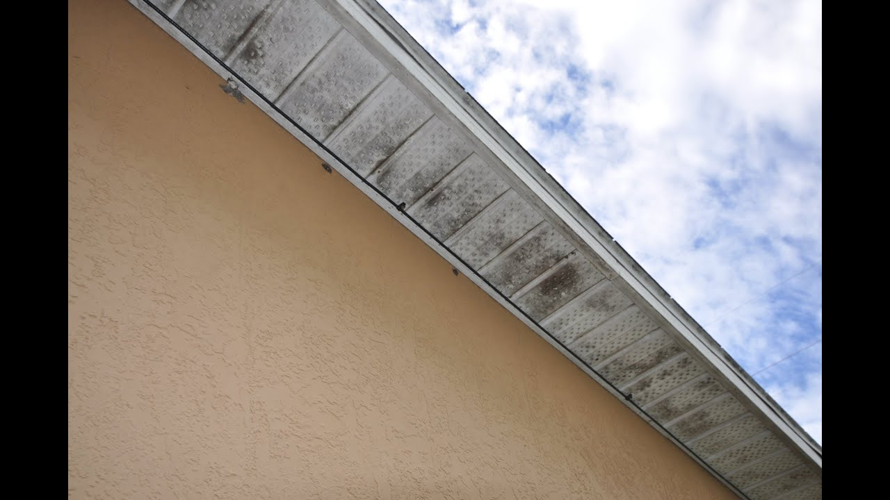 407 370 0822 Pressure Washing Soffit Black Mildew Removal Orlando Fl Youtube