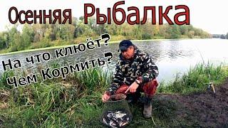 Осенняя фидерная ловля леща и плотвы Насадка по холодной воде Рыбалка осенью Осенняя рыбалка