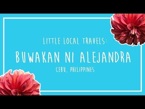 Local Travels (Philippines): Beautiful Flower Garden in Balamban, Cebu