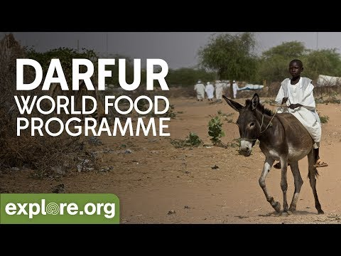 Darfur  -  World Food Programme