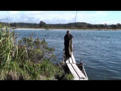 Whitebaiting Hokitika River Trench 09