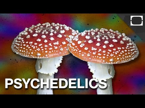 Popular Hallucinogen & Psychedelic drug videos
