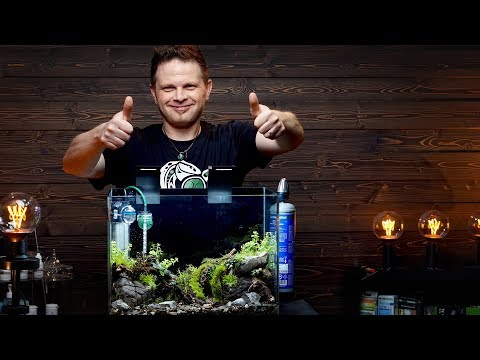 EASY PLANTED AQUARIUM SETUP - WITH VOLKER JOCHUM FROM DENNERLE