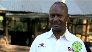Shamba Shape Up clips - Cows Records to keep for dairy farming