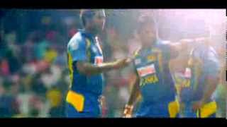 An entire nation wishing Our Lions, Our Pride -  The Sri Lanka Cricket Team