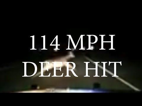 Deputy Hits Deer at 114MPH