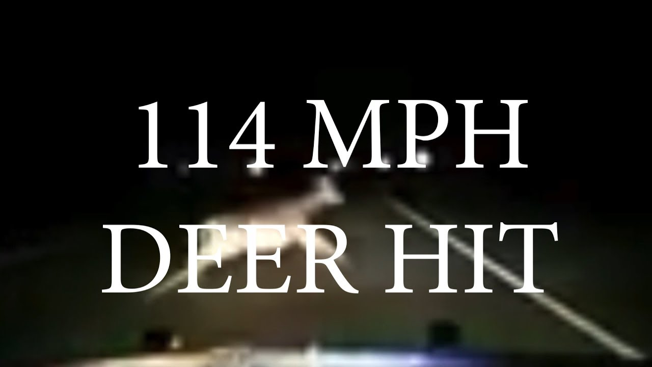 Deputy Hits Deer At 114mph Youtube