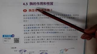 Publication Date: 2019-09-19 | Video Title: 天主教培聖中學 生物科 F4高中課程 單元四