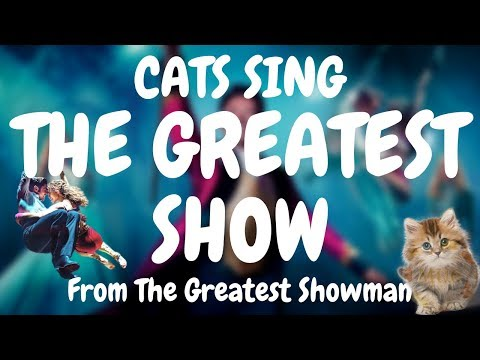 Cats Sing The Greatest Show from The Greatest Showman | Cats Singing Song