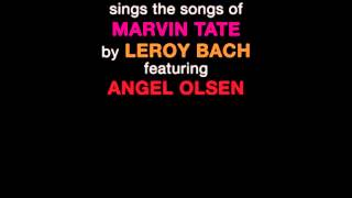 Tim Kinsella Sings The Songs of Marvin Tate By Leroy Bach Featuring Angel Olsen - This Time Not The