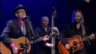 Elvis Costello - Sulpher To Sugarcane