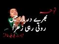 Download Noha - Bharay Darbaar Mein Roti Rahi Zahra S.a -Daniyal 2017 MP3 song and Music Video