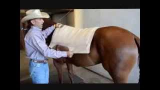 How to Properly Place a Saddle Pad