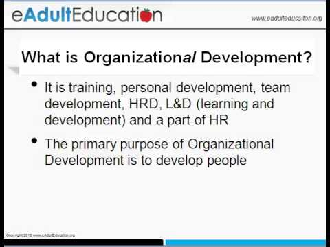 Organization Development vs. Organizational Development
