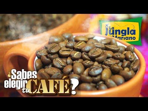 ¿Cómo elegir un buen café?