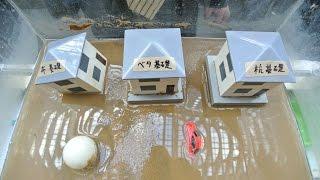 防災展2015~阪神・淡路大震災20年 そして未来へ備えよう~ 液状化実験