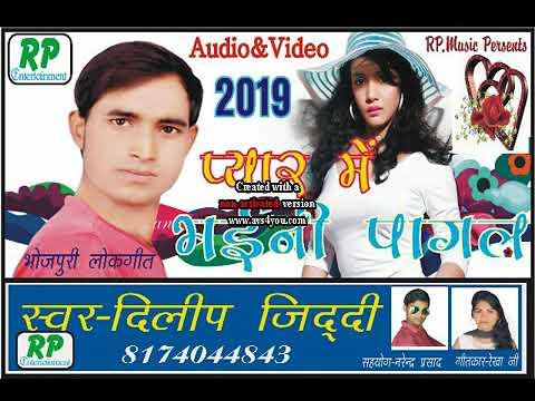 Dilip Ziddi Hit Song 2019
