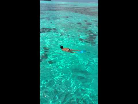Snorkeling :)