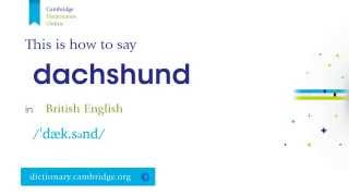 How To Say Dachshund