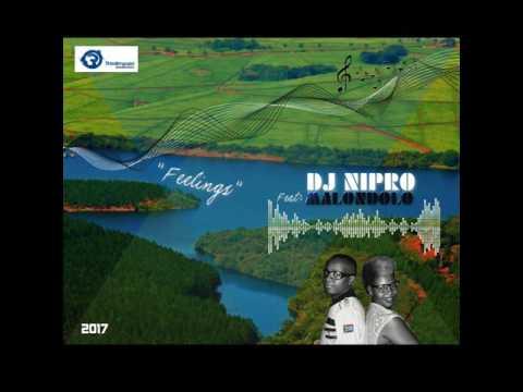 DJ Nipro: Feelings (feat. Malondolo) (Original Mix)