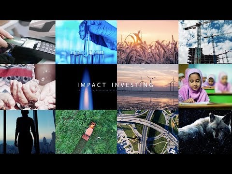 IMPACT INVESTING - How can you help society & environment pr