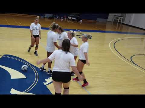 Cleveland State Community College Volleyball 2019