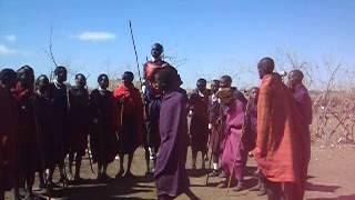 マサイ族の男は高く飛べないといけないのだそうだ。 長い棒を持っていれ...