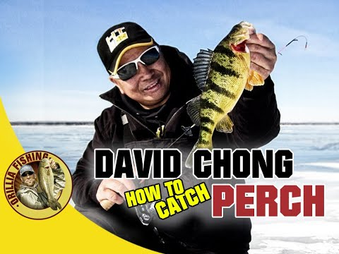 How To Catch Perch With David Chong - Canadian Ice Fishing Expo Talk