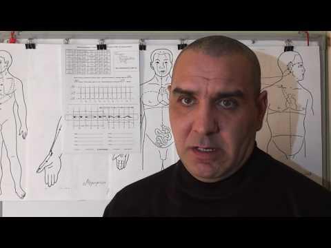 Щитовидная Железа: норма, гормоны, симптомы, заболевания