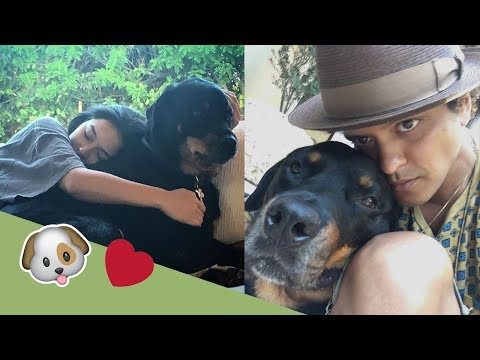 Jessica Caban and Bruno Mars with Geronimo