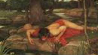 The Mythology of Narcissus