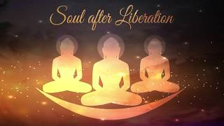 Soul after Liberation
