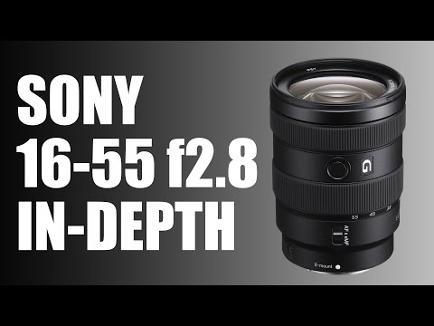 Sony E 16-55mm f2 8 review: BEST premium zoom for Sony APSC