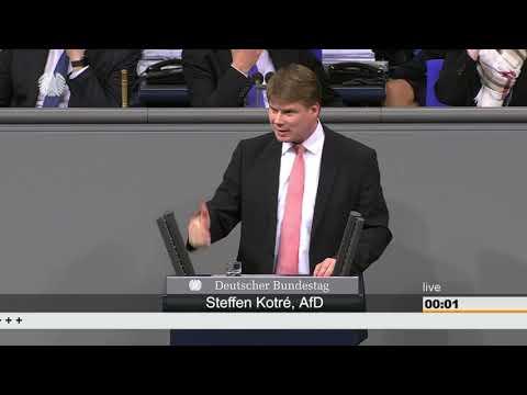 Steffen Kotrè (AfD)