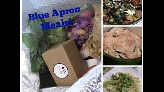 Blue Apron Meals | First Impression & Compared to Hello Fresh!