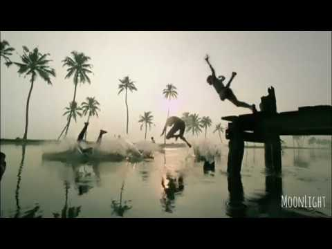 Syama Sundara Kera Kedara Bhoomi | A R Rahman Music| The Great Backwaters| KERALA TOURISM