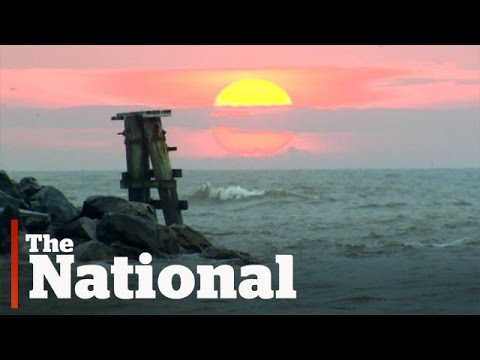 Deepwater Horizon disaster, five years later