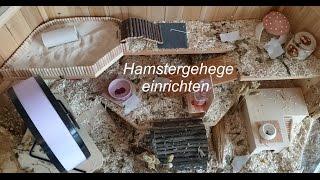 Gehege einrichten   Hamster